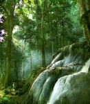 hutanku-asri
