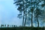 memotret-hutan